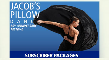 SubscriptionPackages_widgetGraphic-2012